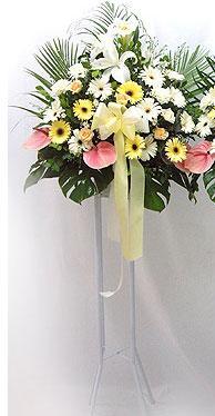 Bursa ya çiçek yolla mudanya cicek , cicekci   perförje çiçegi dügün çiçekleri