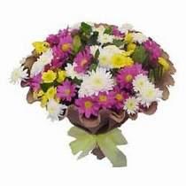 Bursa çiçekçi osman gazi çiçek gönderme sitemiz güvenlidir  Mevsim kir çiçegi demeti