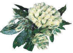 Bursa inegöl kaliteli taze ve ucuz çiçekler  9 Beyaz gül Özel kisiler için