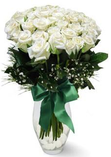 19 adet essiz kalitede beyaz gül  çiçek yolla Bursa orhaneli çiçekçiler