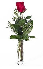 Vazo içerisinde 1 adet kirmizi gül  Bursa çiçek gönderimi nilüfer cicekciler , cicek siparisi
