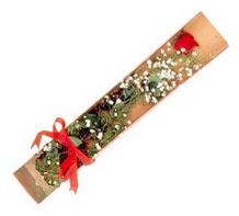 1 adet kirmizi gül  Bursa çiçekçi osman gazi çiçek gönderme sitemiz güvenlidir