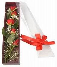 kutu içinde 5 adet kirmizi gül  Bursa inegöl kaliteli taze ve ucuz çiçekler