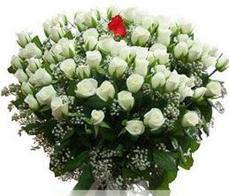 Bursa osmangazi internetten çiçek satışı  100 adet beyaz 1 adet kirmizi gül buketi