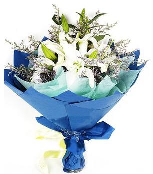 Bursa osmangazi online çiçekçi , çiçek siparişi  4 adet dal kazablankadan görsel buket