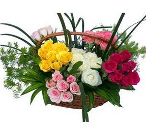 online Bursa ucuz çiçek gönder  35 adet rengarenk güllerden sepet tanzimi