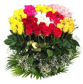 cicekci Bursa inegöl çiçek mağazası , çiçekçi adresleri  51 adet renkli güllerden aranjman tanzimi