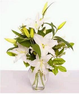 Bursa çiçek nilüfer İnternetten çiçek siparişi  2 dal cazablanca vazo çiçeği