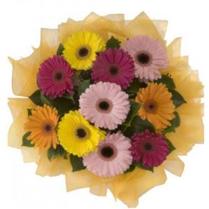 Bursadaki çiçekçiler karacabey çiçekçi telefonları  11 adet karışık gerbera çiçeği buketi