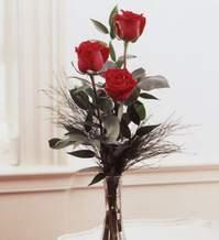 Bursa osmangazi internetten çiçek satışı  Vazoda 3 adet güzel gül