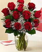 Sevgilime hediye 9 adet 1.ci kalite gül  Bursa osmangazi online çiçekçi , çiçek siparişi