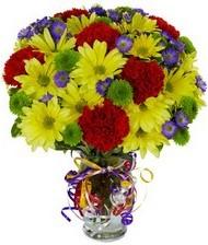 En güzel hediye karışık mevsim çiçeği  çiçekçi Bursa nilüfer hediye çiçek yolla