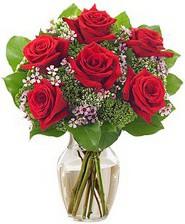 Kız arkadaşıma hediye 6 kırmızı gül  Bursa inegöl kaliteli taze ve ucuz çiçekler
