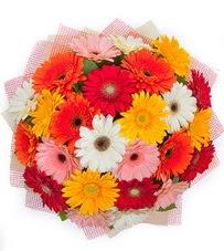 15 adet renkli gerbera buketi  cicekciler Bursa gemlik güvenli kaliteli hızlı çiçek