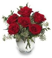 Vazo içerisinde 5 adet kırmızı gül  Bursa orhangazi internetten çiçek siparişi