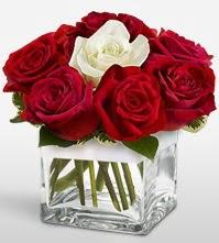 Tek aşkımsın çiçeği 8 kırmızı 1 beyaz gül  Bursa inegöl çiçek servisi , çiçekçi adresleri