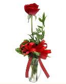 vazo içerisinde 1 adet kırmızı gül  Bursa çiçekçi osman gazi çiçek gönderme sitemiz güvenlidir