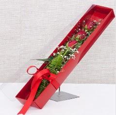 Kutu içerisinde 3 adet kırmızı gül  Bursa ya çiçek yolla mudanya cicek , cicekci