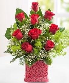 Cam içerisinde 9 adet kırmızı gül  Bursa osmangazi internetten çiçek satışı