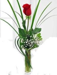 Cam içerisinde 1 kırmızı gül  çiçek siparişi Bursa karacabey çiçek yolla