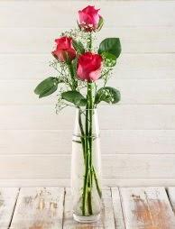 Cam içerisinde 3 kırmızı gül  Bursaya çiçek yolla orhangazi çiçek satışı