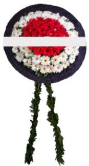 mozele çiçeği  Bursa büyük orhan yurtiçi ve yurtdışı çiçek siparişi