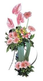 Bursa iznik hediye sevgilime hediye çiçek  Pembe Antoryum Harikalar Rüyasi