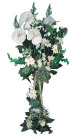 cicekci Bursa inegöl çiçek mağazası , çiçekçi adresleri  antoryumlarin büyüsü özel