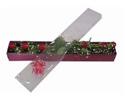 Bursa osmangazi online çiçekçi , çiçek siparişi   6 adet kirmizi gül kutu içinde