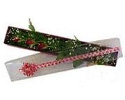 çiçekçi Bursa nilüfer hediye çiçek yolla  3 adet gül.kutu yaldizlidir.
