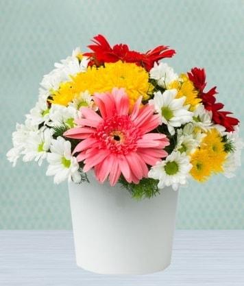 Seramik Vazoda Gelbera ve Papatya  Bursa çiçek nilüfer İnternetten çiçek siparişi