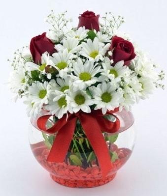Fanusta 3 Gül ve Papatya  Bursa osmangazi internetten çiçek satışı