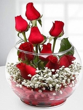 Kırmızı Mutluluk fanusta 9 kırmızı gül  Bursa çiçek gönder nilüfer çiçek siparişi vermek