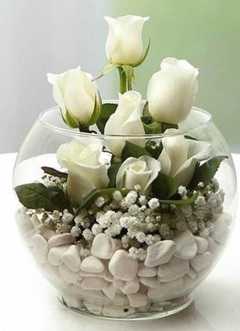 Beyaz Mutluluk 9 beyaz gül fanusta  Bursa çiçek gönder nilüfer çiçek siparişi vermek