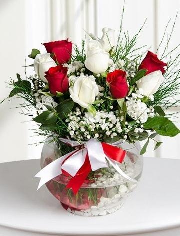 Aşk Küresi  5 beyaz 5 kırmızı gül fanusta  Bursa osmangazi internetten çiçek satışı