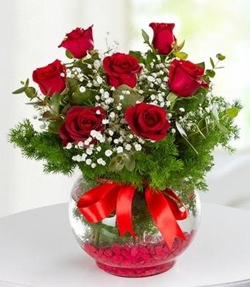 fanus Vazoda 7 Gül  Bursada çiçekçi osmangazi çiçek , çiçekçi , çiçekçilik