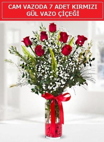 Cam vazoda 7 adet kırmızı gül çiçeği  çiçek siparişi Bursa karacabey çiçek yolla