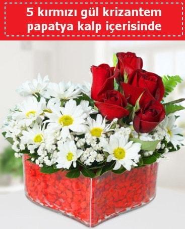 mika kalp içerisinde 5 kırmızı gül papatya  Bursa çiçek nilüfer İnternetten çiçek siparişi