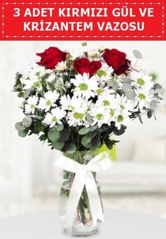 3 kırmızı gül ve camda krizantem çiçekleri  Bursa çiçek nilüfer İnternetten çiçek siparişi