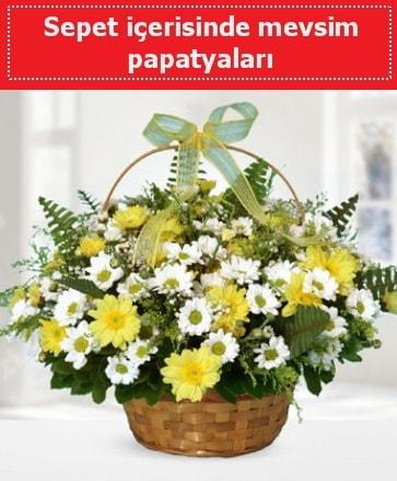 Sepet içerisinde mevsim papatyaları  online Bursa ucuz çiçek gönder